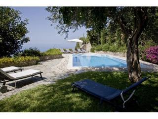 Villa with pvt swimming pool-wifi-air conditioner - Capri vacation rentals