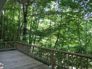 Nice Cabin with Deck and Porch - Bryson City vacation rentals