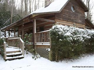 Cozy Private Log Cabin Min to ASU & River*Hot Tub - Valle Crucis vacation rentals