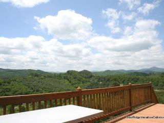Sunny Family Cabin*Walk to River*Hot Tub*PoolTable - Todd vacation rentals