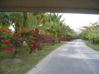 Pelican View - Premier Caribbean Vacation Villa on the Water - Jolly Harbour vacation rentals