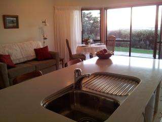 Romantic 1 bedroom Auckland Apartment with Internet Access - Auckland vacation rentals