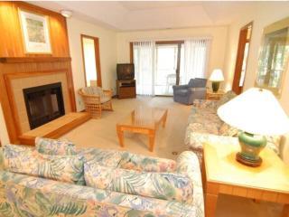 Night Heron 4117 - Kiawah Island vacation rentals