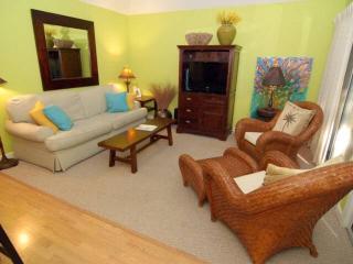 Turtle Cove 5528 - Kiawah Island vacation rentals
