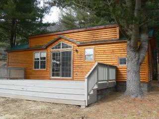 Happy Trails Cabin - Wellsboro vacation rentals
