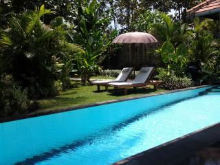 Private Garden Villa with pool - close to Lovina - Lovina vacation rentals
