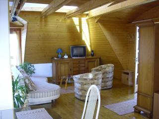 Separate built attic, complete with wood-paneled, - Eger vacation rentals