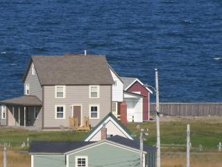2 bedroom House with Internet Access in Bonavista - Bonavista vacation rentals