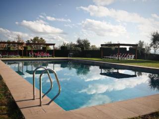 Castello di Pastine - 1A - Barberino Val d'Elsa vacation rentals