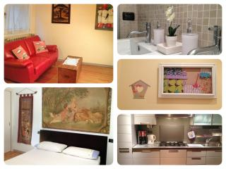 Maresca Aptartment Bologna city center free WIFI - Bologna vacation rentals