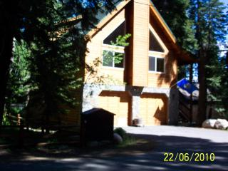 """Eagles Nest"" Large Lakeside Cabin Like New! - Homewood vacation rentals"
