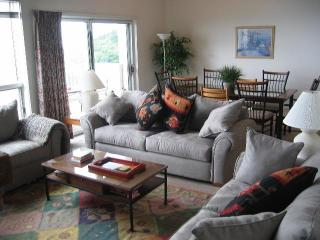 Condo on the ridge with spectacular view - Wintergreen vacation rentals