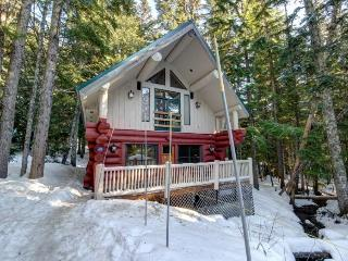 Little Bear Cabin - Mount Hood vacation rentals