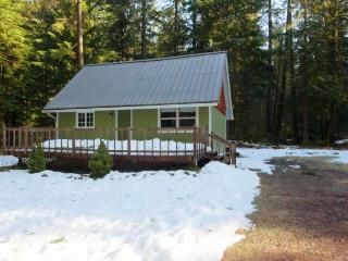 Mount Hood Cabin-NEW HOT TUB - Welches vacation rentals