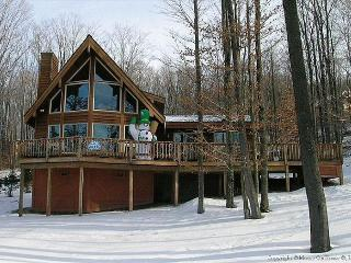 Beautiful contemporary slope side home offers it all in EVERY season. - Davis vacation rentals