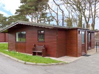 PRIMROSE LODGE, detached ground floor, woodland setting in Saltburn Ref 13015 - Saltburn-by-the-Sea vacation rentals