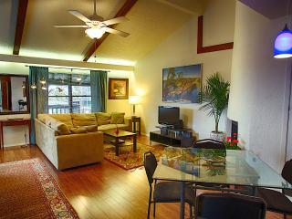 Barton Hills Abode 2/2 - Austin vacation rentals