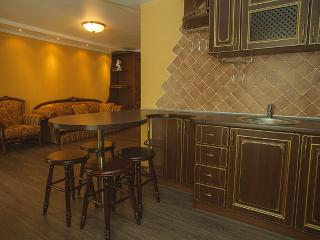 Appartment Daily Rent - Zaporizhia Oblast vacation rentals