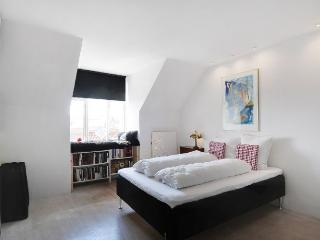 Modern New Yorker style Copenhagen apartment - Copenhagen vacation rentals