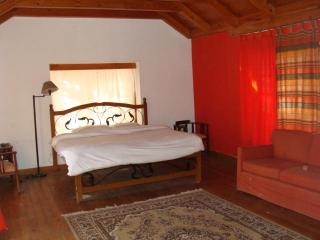 4 bedroom Cottage with Swing Set in Manali - Manali vacation rentals