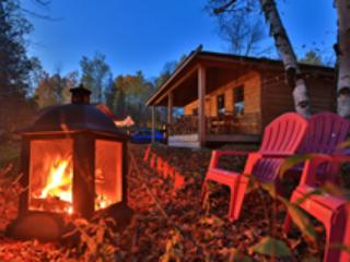 Nice Cottage with Deck and Internet Access - Killaloe vacation rentals