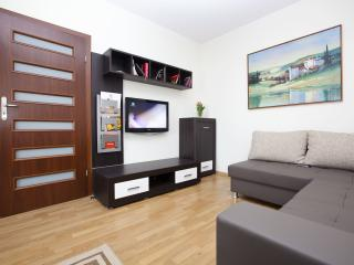 MODERN - LUXURY Apartment in Cracow City Center !! - Krakow vacation rentals