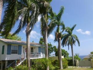 Eden Villa - walk to beach in 5 mins and free wif - Boscobel vacation rentals