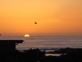 Hidden Garden Bungalow - ON THE BEACH - Oceanside vacation rentals