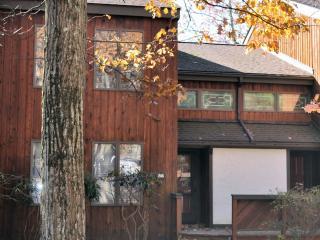 86 Blue Heron~Lake Front @ Big Boulder Lake - Lake Harmony vacation rentals