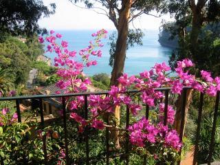 Beautiful 5 bedroom Portofino Villa with Internet Access - Portofino vacation rentals