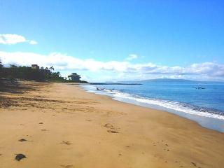 Kihei Bay Surf #238 Renovated, SUMMER SPECIAL $75 / NIGHT! - Kihei vacation rentals