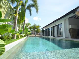 M-VILLA LUXURY 3-BR VILLA HEART OF SEMINYAK WITH V - Seminyak vacation rentals