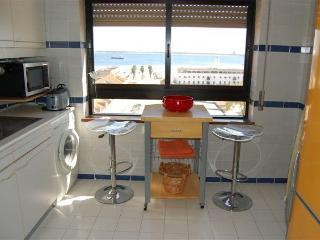 Sea view from all rooms in Setúbal - Setubal vacation rentals