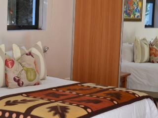 Romantic House with Internet Access and Satellite Or Cable TV - Stellenbosch vacation rentals