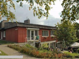 Barilla - Rest In A Pine Wood of Nida - Nida vacation rentals