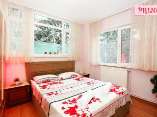 A Secret Garden at City Center - Istanbul vacation rentals