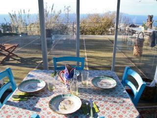 Capri- Lovely Cozy Villa with large garden and terrace - Capri vacation rentals