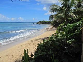 At the Waves - Oceanfront Villa - Ground Level - Isla de Vieques vacation rentals
