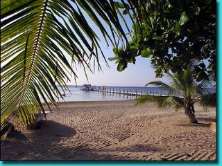 Topical Island Pool Home w/ Casita & 400 foot Dock - Sandy Bay vacation rentals
