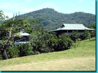Topical Island Pool Home w/ Casita & 400 foot Dock - Roatan vacation rentals