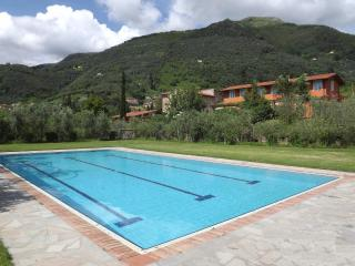 house with private garden - Camaiore vacation rentals