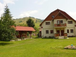 Beautiful mountains & Relax - Lunca de Jos vacation rentals