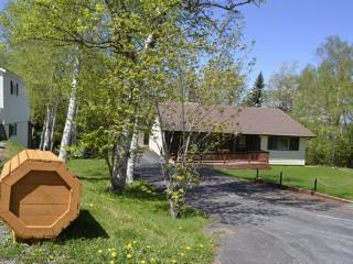 Appleton- Luxury 1500 sq ft home (Gander area) - Gander vacation rentals