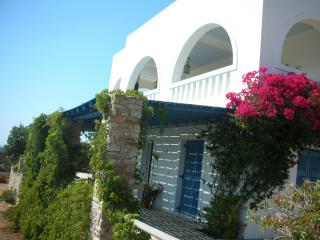 Perfect Antiparos vacation House with Cleaning Service - Antiparos vacation rentals