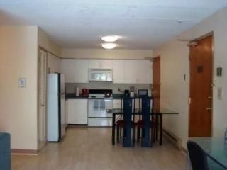 Harvard Square Furnished Apartments rentals - Cambridge vacation rentals