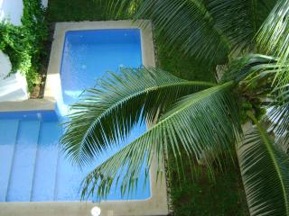 Beautiful Penthouse Condo in Playa del Carmen, Mex - Playa del Carmen vacation rentals
