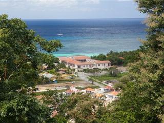 Turrets 21  Casa la Buena Vida COLIBRI - Bay Islands Honduras vacation rentals