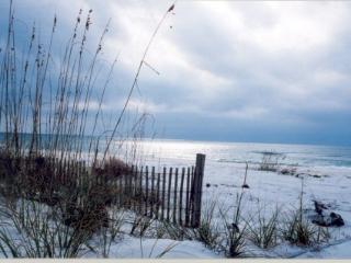 Sea Clusion - Tybee Island vacation rentals