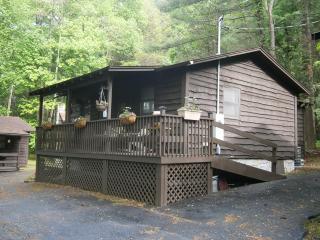 Bear-y Cozy - Maggie Valley vacation rentals