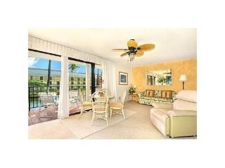 Hawaii Ocn Vw Condo SPCL $95/nt FOR 2 wk rental st - Image 1 - Lihue - rentals